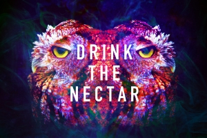 drink the nectar 3